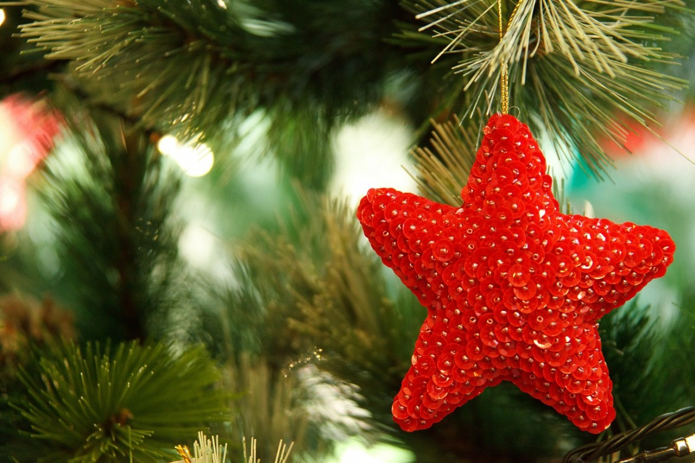 Horario arbol de navidad murcia